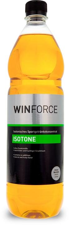 Isotone Isotone 1-Liter Flasche Winforce 471970305493 Geschmack Zitrone-Wacholder Farbe farbig Bild Nr. 1