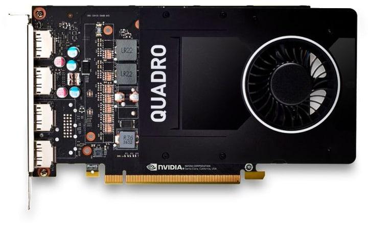 NVIDIA Quadro P2200 5GB Card graphique HP 785300151986 Photo no. 1