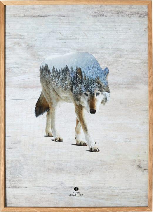 WOLF Bild gerahmt 431834200000 Bild Nr. 1