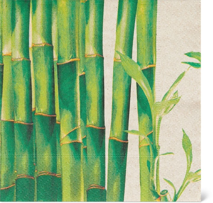 Tovaglioli di bambù, 25 x 25 cm Cucina & Tavola 705480000000 N. figura 1