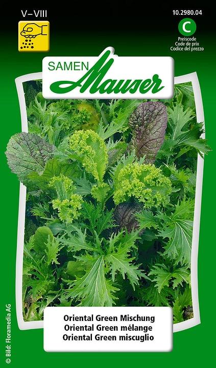 Oriental Green Mischung Samen Mauser 650112901000 Inhalt 2.5 g (ca. 1 - 3 m² ) Bild Nr. 1