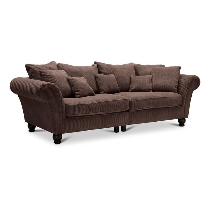 MARLENE canapé à 3 places 360063818504 Dimensions L: 270.0 cm x P: 111.0 cm x H: 78.0 cm Couleur Brun foncé Photo no. 1