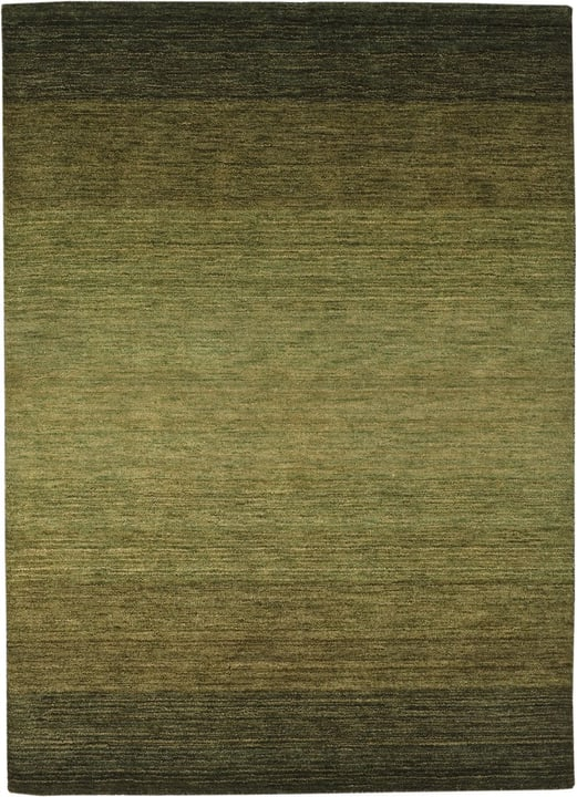 GABBEH Tapis 411961117060 Couleur vert Dimensions L: 170.0 cm x P: 230.0 cm Photo no. 1