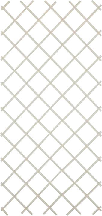 Griglia di plastica estensibile Do it + Garden 647034100000 Colore Bianco Taglio L: 60.0 cm x P: 4.0 cm x A: 180.0 cm N. figura 1