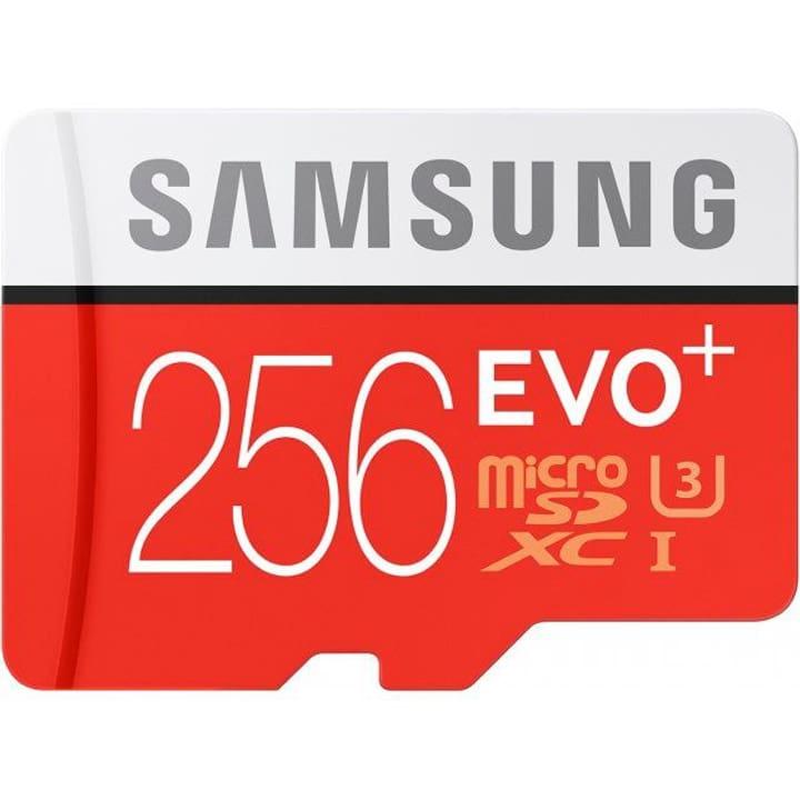Scheda di memoria Evo Plus microSDXC 256 GB Micro SD Samsung 798223800000 N. figura 1