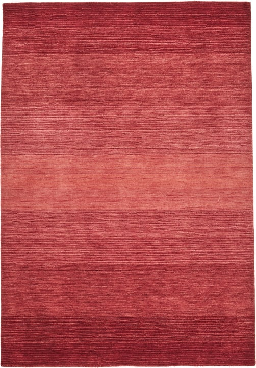 AURORA Tapis 411985716030 Couleur rouge Dimensions L: 160.0 cm x P: 230.0 cm Photo no. 1