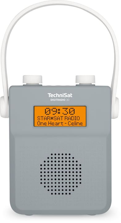 Digitradio 30 - Gris Radio DAB+ Technisat 785300151120 Photo no. 1