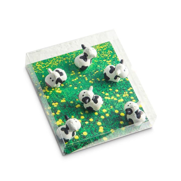 COW Magnete 386155700000 Bild Nr. 1