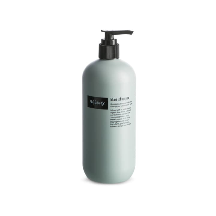 SOLEY shampooing cheveux 500ml 374142800160 Couleur Vert Photo no. 1