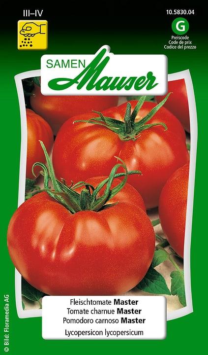 Pomodoro carnoso Master Semente Samen Mauser 650115702000 Contenuto 0.1 g (ca. 15 piante o 6 m²) N. figura 1