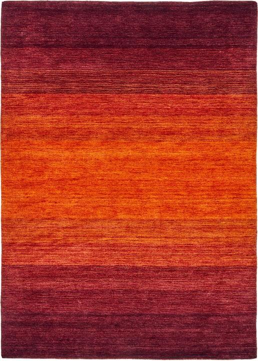 GABBEH Tapis 411961117030 Couleur rouge Dimensions L: 170.0 cm x P: 230.0 cm Photo no. 1
