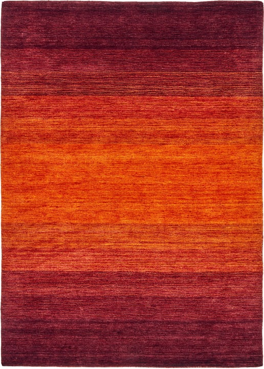 GABBEH Teppich 411961120130 Farbe rot Grösse B: 200.0 cm x T: 300.0 cm Bild Nr. 1