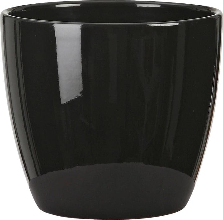 Cache-pot brillant Scheurich 657434500000 Couleur Noir Taille ø: 19.0 cm Photo no. 1