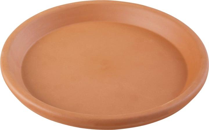 Sottovaso in terracotta Euganea 659535100000 Taglio ø: 31.0 cm x A: 4.0 cm Colore Terracotta N. figura 1