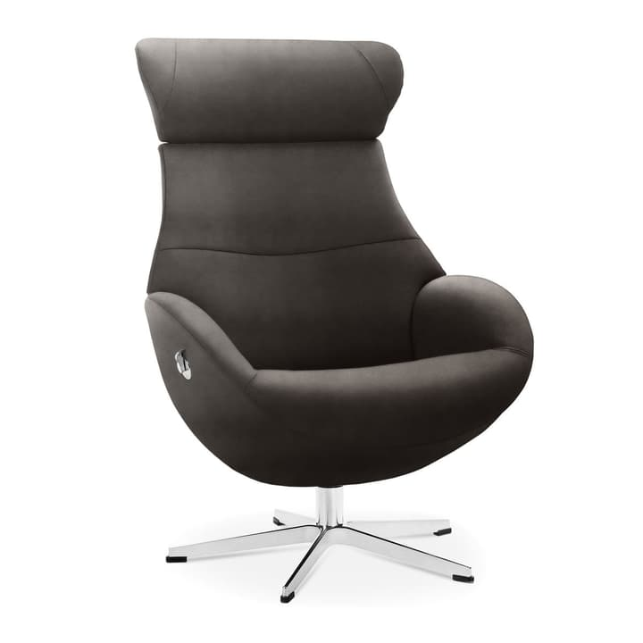 MEDIA Sessel 360040035001 Grösse B: 81.0 cm x T: 80.0 cm x H: 90.0 cm Farbe Braun Bild Nr. 1