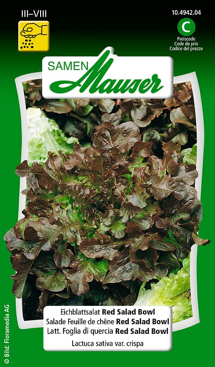 Lattughino Foglia di Quercia Red Salad Bowl Samen Mauser 650114601000 Contenuto 2.5 g (ca. 2 - 5 m²) N. figura 1