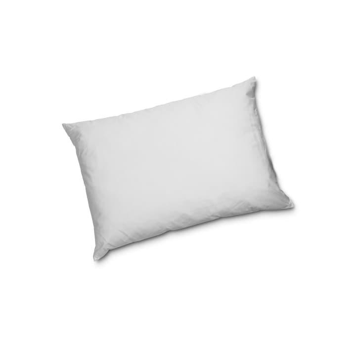 BASIC REGULAR Cuscino di piume 376050700000 Colore Bianco Dimensioni L: 50.0 cm x L: 70.0 cm N. figura 1
