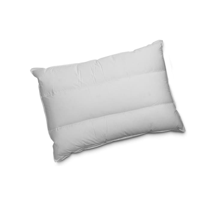 COMFORT FLEX Coussin de nuque 376040300000 Photo no. 1