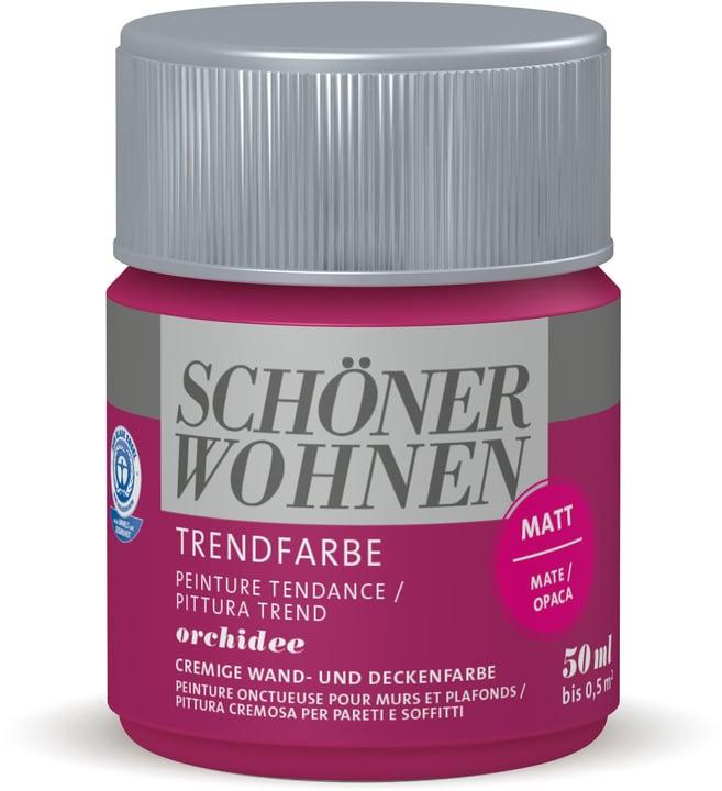 Vernice di tendenza opaca tester Orchidee 50 ml Schöner Wohnen 660908800000 Colore Orchidee Contenuto 50.0 ml N. figura 1