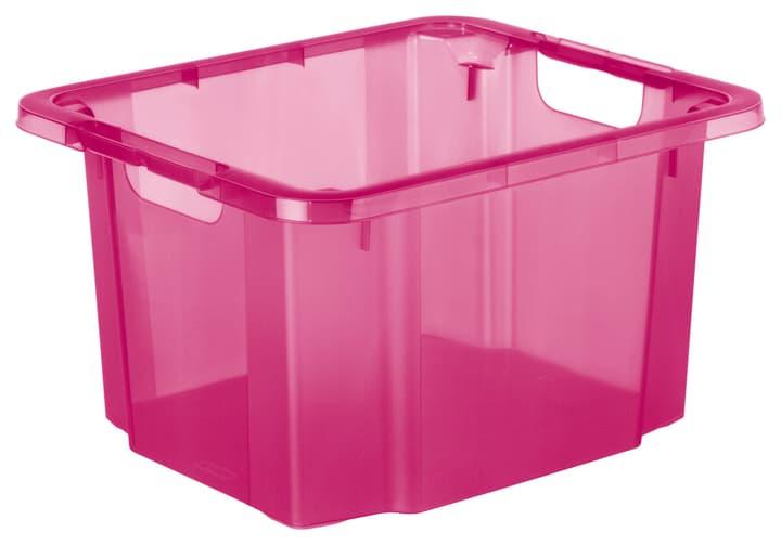 Reverso pink, 26L Rotho 603631600000 Grösse L: 43.5 cm x B: 36.5 cm x H: 23.5 cm Farbe Pink Bild Nr. 1