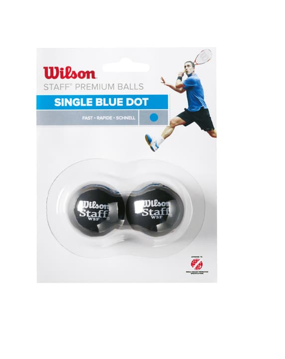 Wilson Squash Ball Blau Squash-Ball Wilson 491411400000 Bild-Nr. 1