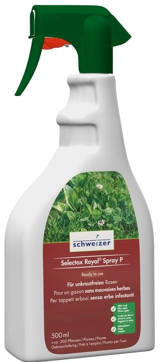 Selectox Royal Spray P, 500 ml Eric Schweizer 658014700000 Photo no. 1