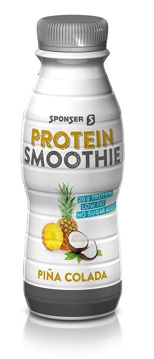 Protein Smoothie Smoothie Sponser 471963300000 Photo no. 1