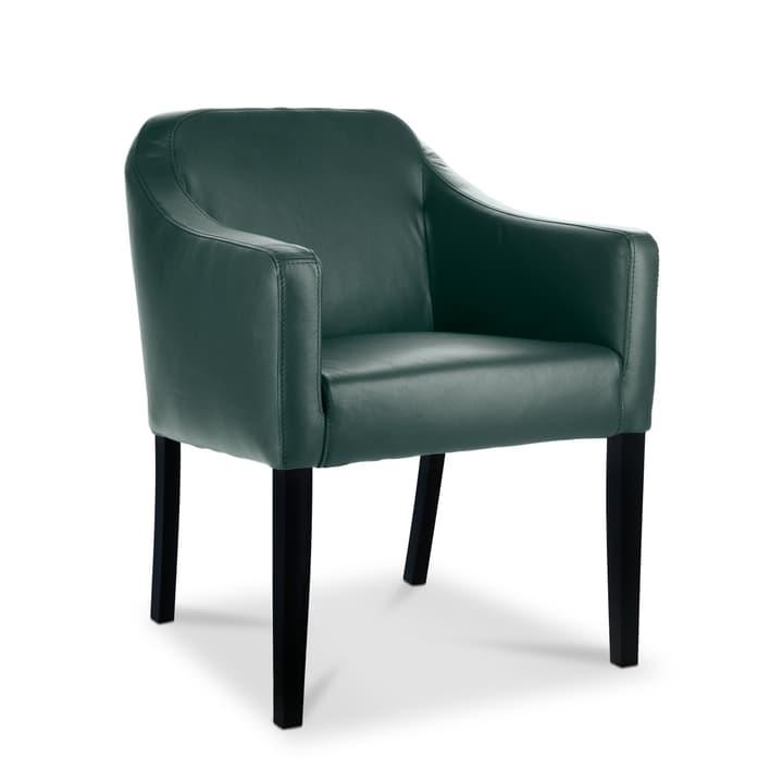 LUCAS Chaise Sauvage 366009136709 Dimensions L: 62.0 cm x P: 63.0 cm x H: 79.0 cm Couleur Olive Photo no. 1