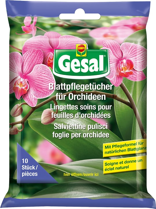 Blattpflegetücher für Orchideen, 10 Tücher Compo 658228500000 Bild Nr. 1