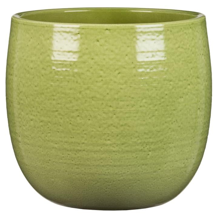Cache-pot Glazing Green Scheurich 658717600018 Couleur Vert Taille ø: 18.0 cm x L: 18.0 cm x L: 18.0 cm x P: 16.5 cm Photo no. 1
