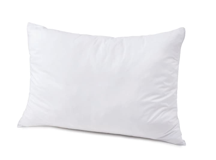 DOWN TOUCH medium Oreiller plat synthétique 451749610610 Couleur Blanc Dimensions L: 65.0 cm x P: 65.0 cm Photo no. 1