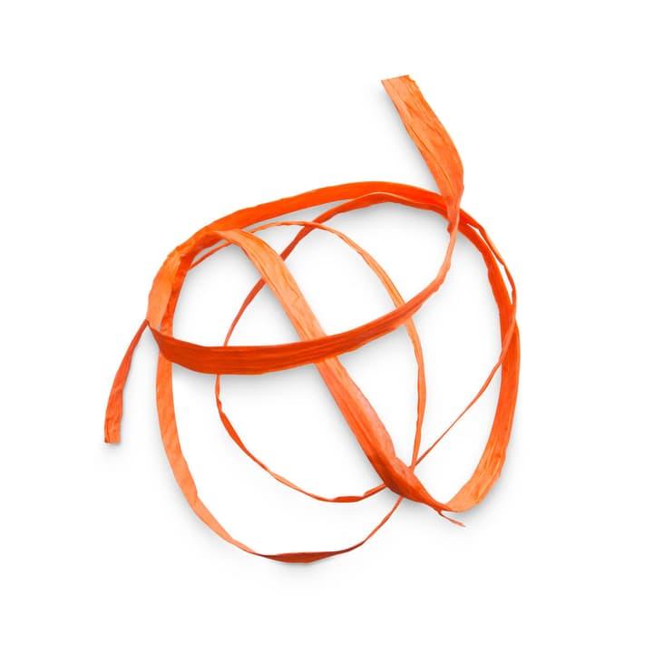 NEW PAPER Geschenkband 5 mm  x 30 m 386182800000 Farbe Orange Grösse B: 3000.0 cm x T: 0.5 cm x H: 0.1 cm Bild Nr. 1