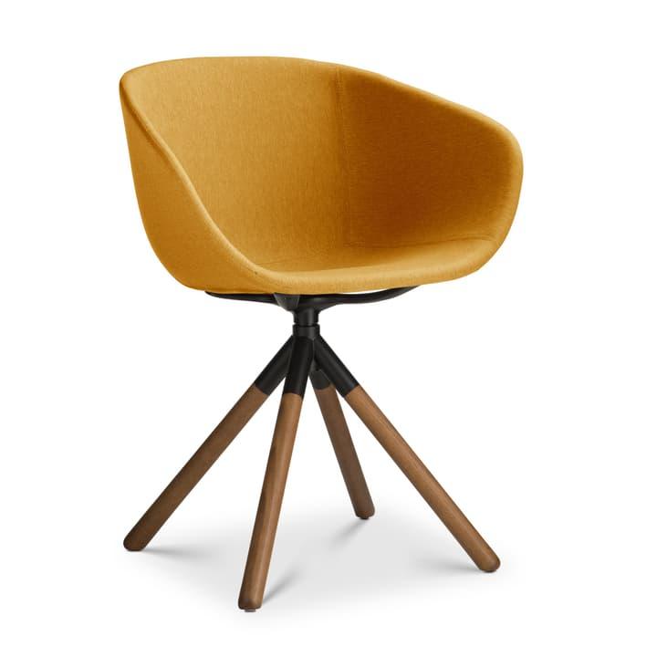SEDIA Stuhl mit Armlehne 366188100000 Grösse B: 45.0 cm x T: 58.0 cm x H: 88.5 cm Farbe Gelb Bild Nr. 1