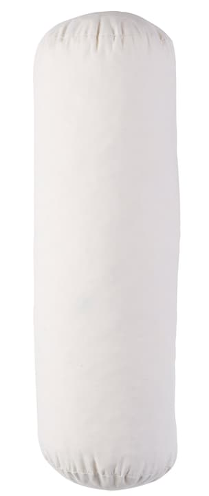 IVET Kissenfüllung 450682540410 Farbe Weiss Grösse B: 15.0 cm x H: 45.0 cm Bild Nr. 1