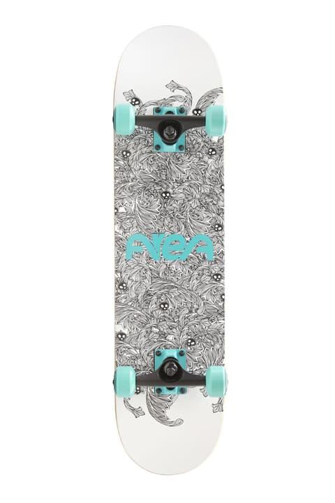 Taylor Skateboard 78.74 cm Area 492388300000 Photo no. 1