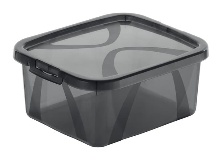 Arco Box 2L, gris Rotho 603629600000 Taille L: 19.0 cm x L: 16.5 cm x H: 8.7 cm Couleur Gris Photo no. 1