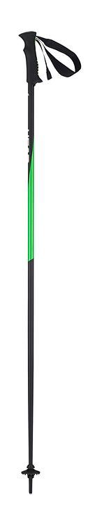 Head Bâton de ski pour adulte Head 493925411520 Longueur 115 Couleur noir Photo no. 1