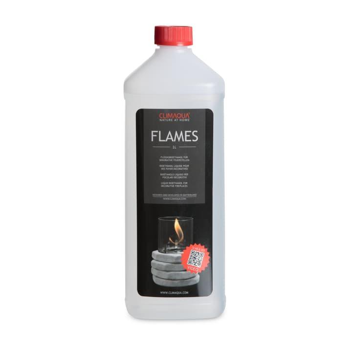 FLAMES Bioethanol 390236300000 Bild Nr. 1