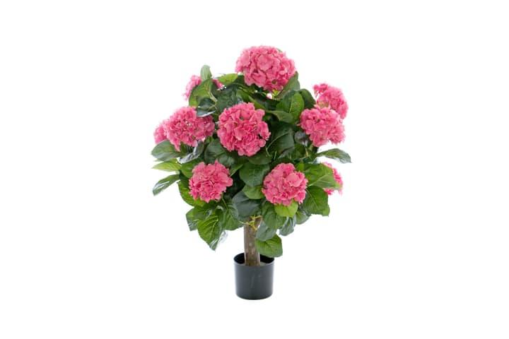 Kunstpflanze Hydrangea rosa Do it + Garden 658955500000 Bild Nr. 1