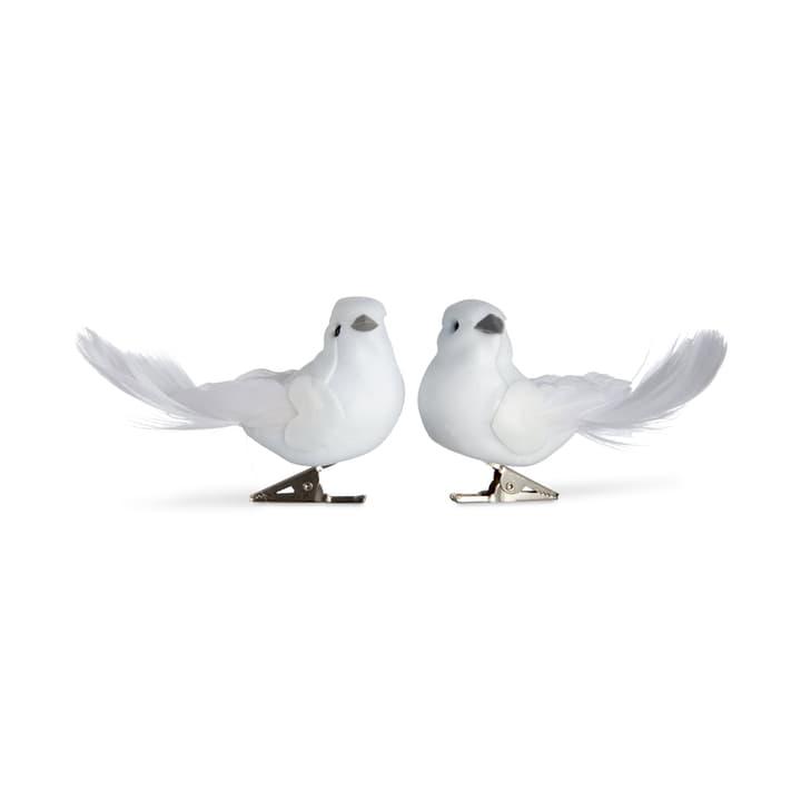 ELLA Oiseau sur clip Box 2 pièces 390277700000 Photo no. 1