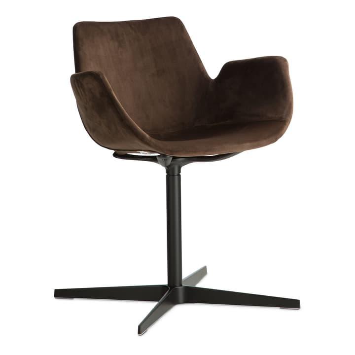 NITA Chaise avec accoudoirs 366120382801 Dimensions L: 47.0 cm x P: 54.0 cm x H: 73.0 cm Couleur Brun foncé Photo no. 1
