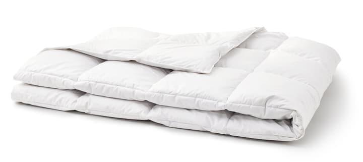 OPTIMADAUN medium warm Couette pour toute l'année avec 60% de duvet 451745612410 Couleur Blanc Dimensions L: 160.0 cm x P: 240.0 cm Photo no. 1