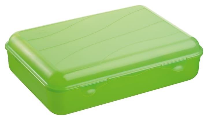 M-TOPLINE Clic Clac Box M-Topline 702935900060 Farbe Grün Grösse B: 21.0 cm x T: 8.0 cm x H:  Bild Nr. 1