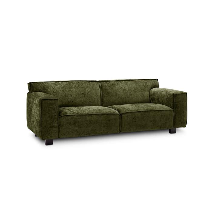 VESTA Eros canapè à 2.5 places 360032705401 Dimensions L: 216.0 cm x P: 96.0 cm x H: 74.0 cm Couleur Vert Photo no. 1