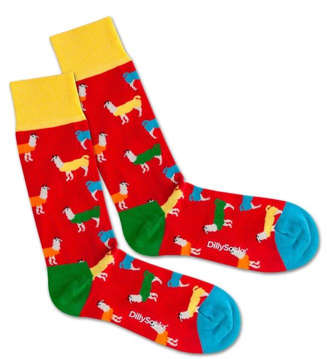 Dilly Socks Lava Lama Gr. 41-46 396129100000 Bild Nr. 1