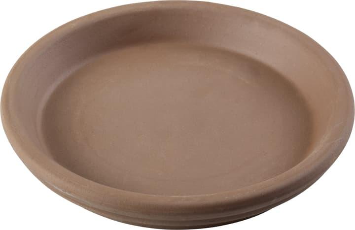 Soucoupe en argile Deroma 659531500000 Taille ø: 15.0 cm x H: 2.5 cm Photo no. 1