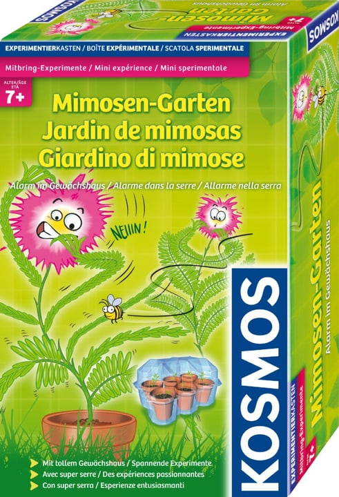 Jardin de mimosas Alarme dans la serre 748619100000 Photo no. 1