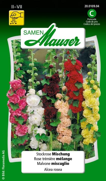 Malvone miscuglio Semente Samen Mauser 650100601000 Contenuto 1 g (ca. 50 piante o 4-5 m²) N. figura 1
