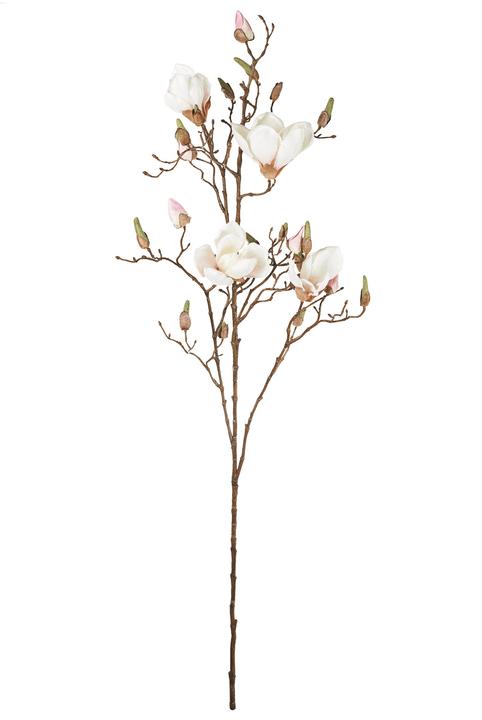 MAGNOLIA-BRANCHE Fleur artificielle 440670300000 Photo no. 1