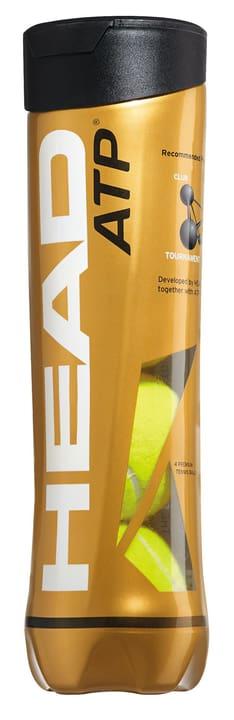 HEAD ATP SWISS TENNIS 4 Palline Head 491548900000 N. figura 1